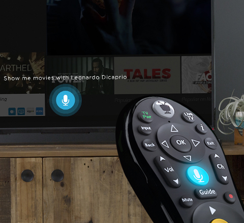DVR remote control with voice for home